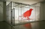 Инсталляция | Ran Hwang | 01