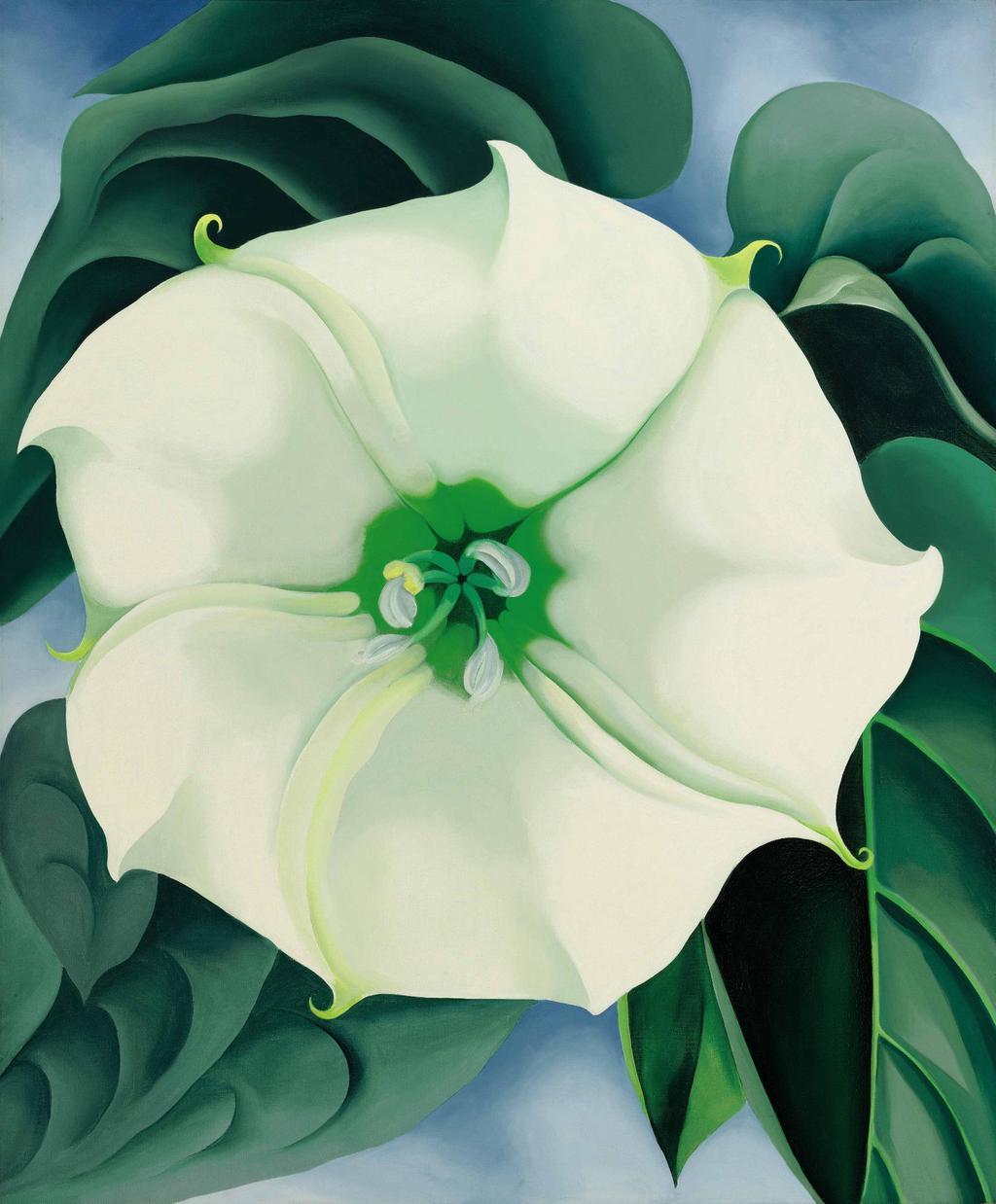 Georgia O'Keeffe (Дурман/Белый цветок №1)