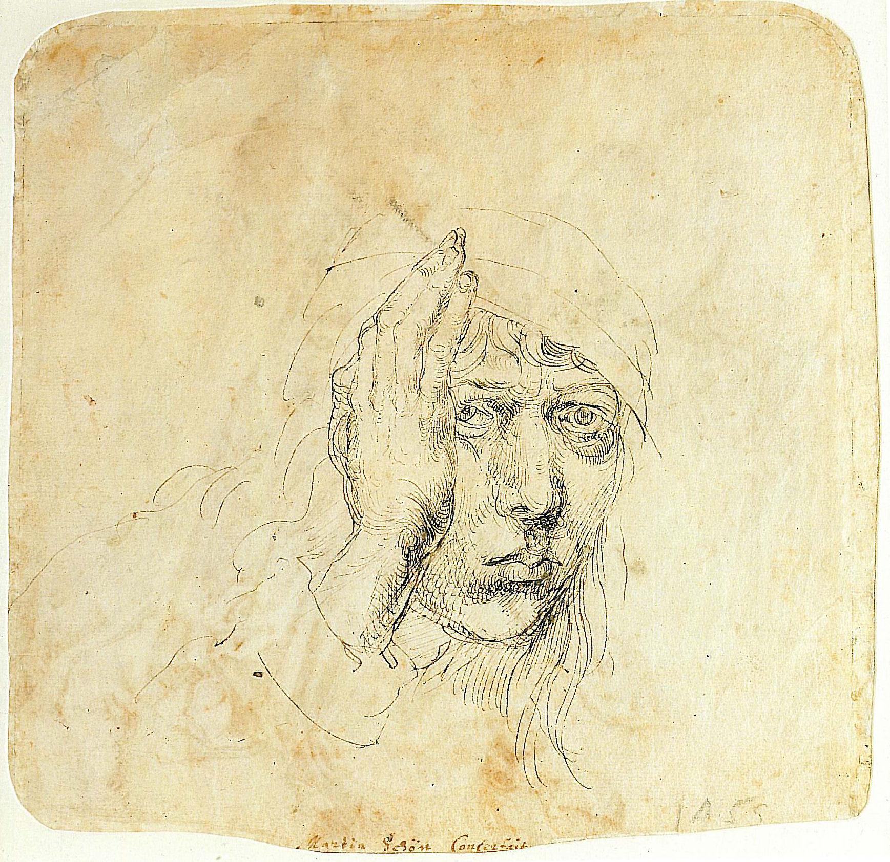 Albrecht Dürer (1491-92. Автопотрет в 20 лет)