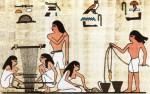 История | Древний Египет | 14