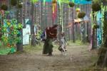 Репортаж | Forest Quest | © Елена Уколова | 12