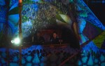Репортаж | Forest Quest | © Елена Уколова | 15