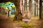 Репортаж | Forest Quest | © Елена Уколова | 24