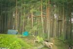 Репортаж | Forest Quest | © Елена Уколова | 28