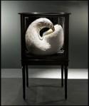 Скульптура | Kate MccGwire | 05