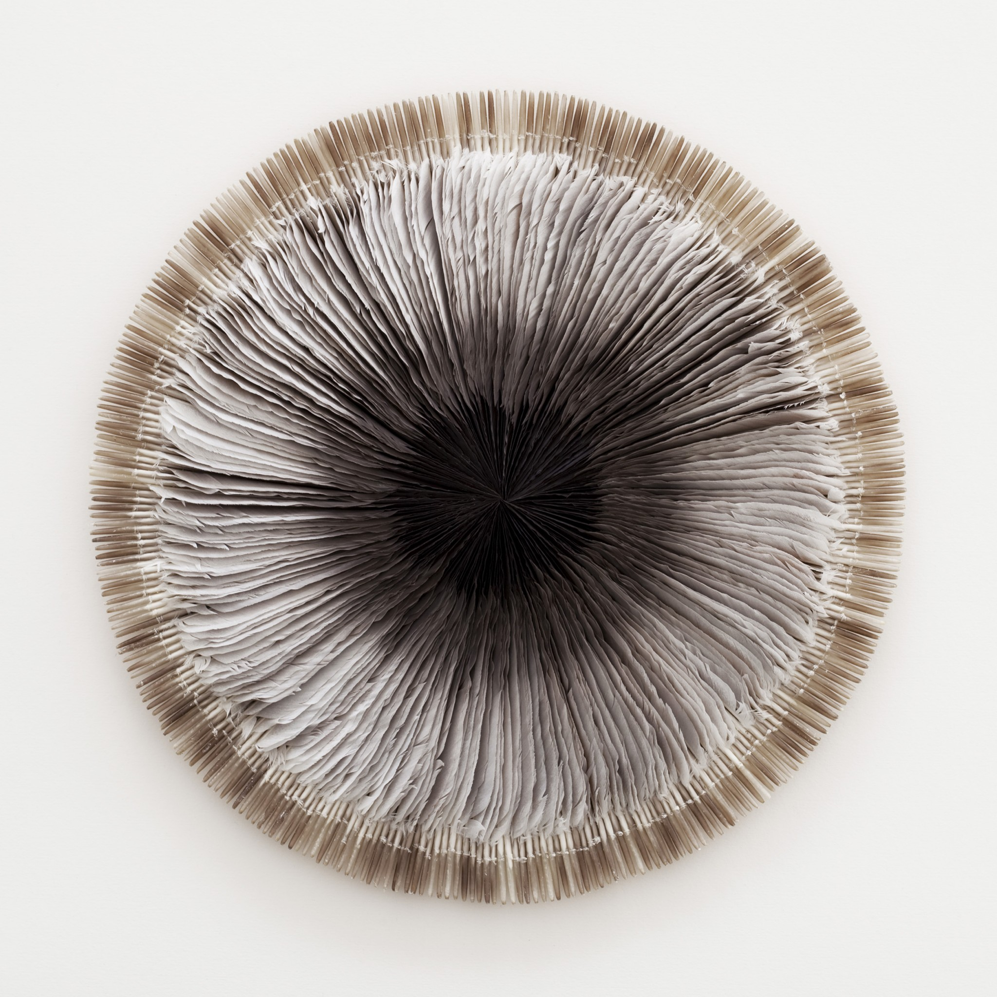 Kate MccGwire. Quiver IV