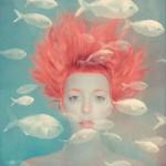 Фотография | Анка Журавлева | The aquatic