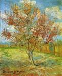 Живопись | Винсент ван Гог | Розовый персик в цвету. Март, 1888
