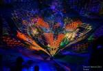 Живопись | Ихтиандерсон | Trimurti festival 2013, Russia