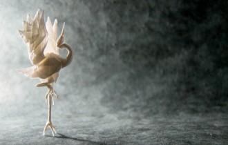 Гонсало Гарсия Кальво. Шедевры искусства оригами