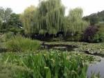 Репортаж | Живерни Клода Моне | Плакучая ива и пруд с водяными лилиями