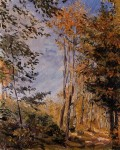 Живопись | Макс Слефогт | Осенний лес, 1906