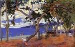 Живопись | Поль Гоген | Coastal Landscape from Martinique, 1887