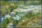 Живопись | Childe Hassam | The Water Garden, 1909