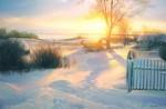 Живопись | Вячеслав Палачев | Морозный день