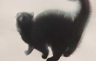 Акварельные коты, сказочные миры и удивительные иллюзии