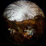 Фотография | Егор Никифоров | Autumn Illusion