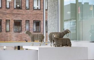 Телефонные овцы Жана-Люка Корне