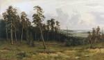 Живопись | Иван Шишкин | Опушка леса, 1882