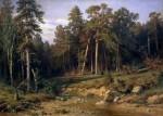 Живопись | Иван Шишкин | Сосновый бор. Мачтовый лес в Вятской губернии, 1872