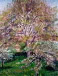Живопись | Камиль Писсарро | Цветущие яблони и декоративный орех в Эраньи