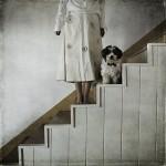 Фотография | Хайди Лендер | Once Upon