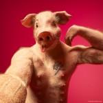 Цифра | Кристиан Джиротто | Social Animals
