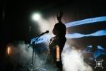 Музыка | Mustelide