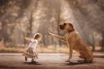 Фотография | Андрей Селиверстов | Маленькие дети и их большие собаки