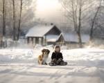 Фотография | Елена Шумилова