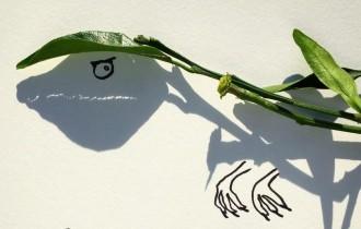 Винсент Баль – тень, обманывающая сознание