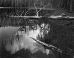 Фотография | Ансел Адамс | Siesta Lake, 1958