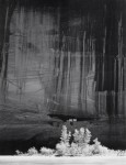 Фотография | Ансел Адамс | White House Ruin, Morning, Canyon de Chelly, 1950