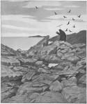 Иллюстрация | Теодор Киттельсен | Чёрная смерть | Чума идёт