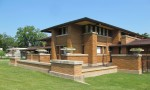 Архитектура | Фрэнк Ллойд Райт | Серия «Дома Прерий» | Дом Дарвина Д. Мартина, Буффало, США