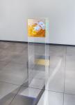 Инсталляция | Гэвин Терк | NMEME, 2015