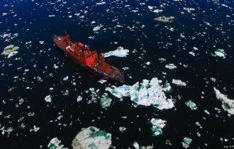 Хроники Арктики. Люди и природа Севера